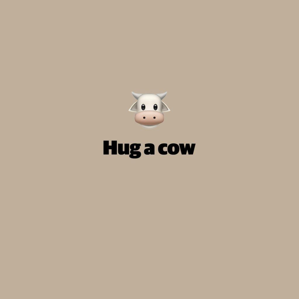 Hug a cow