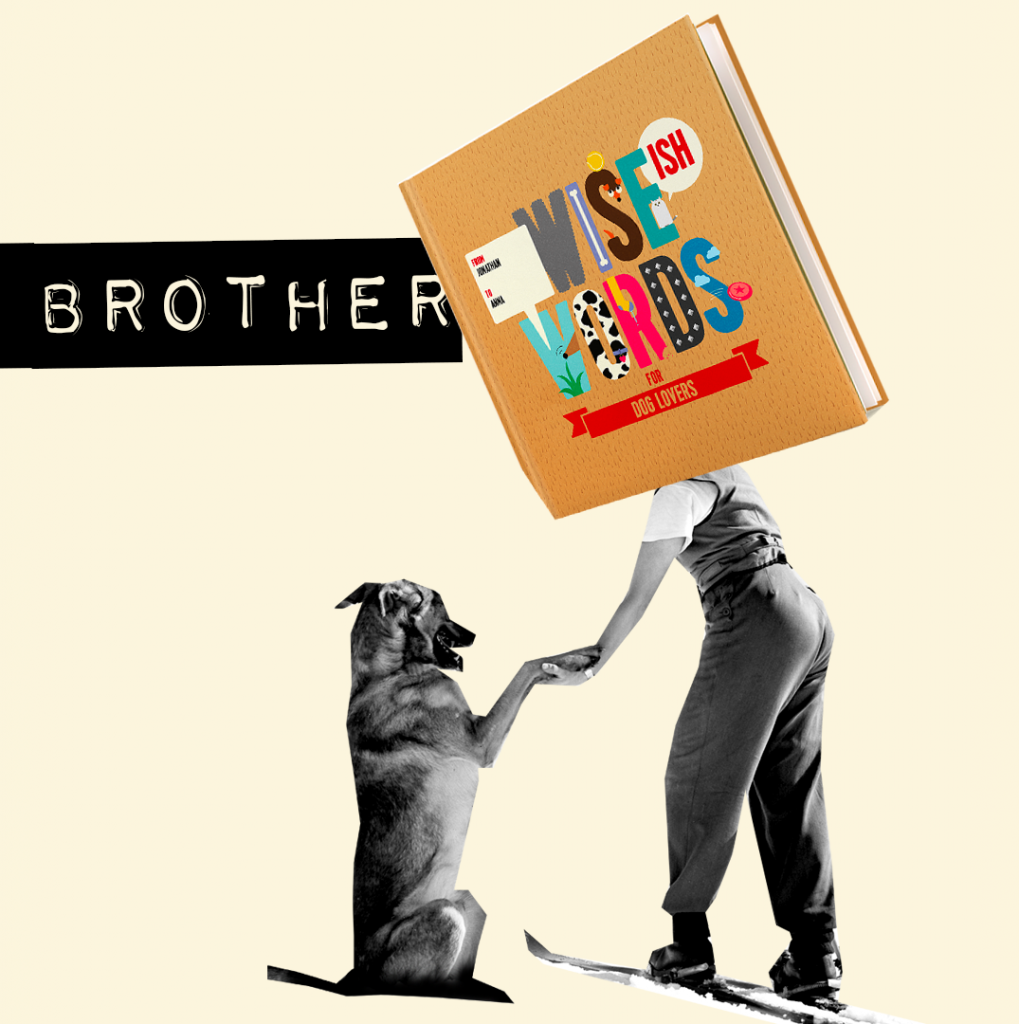 dog lover brother wise words book